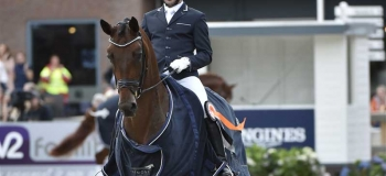 Fiontini sold to Swedish rider